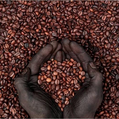 coffee-beans-bunna