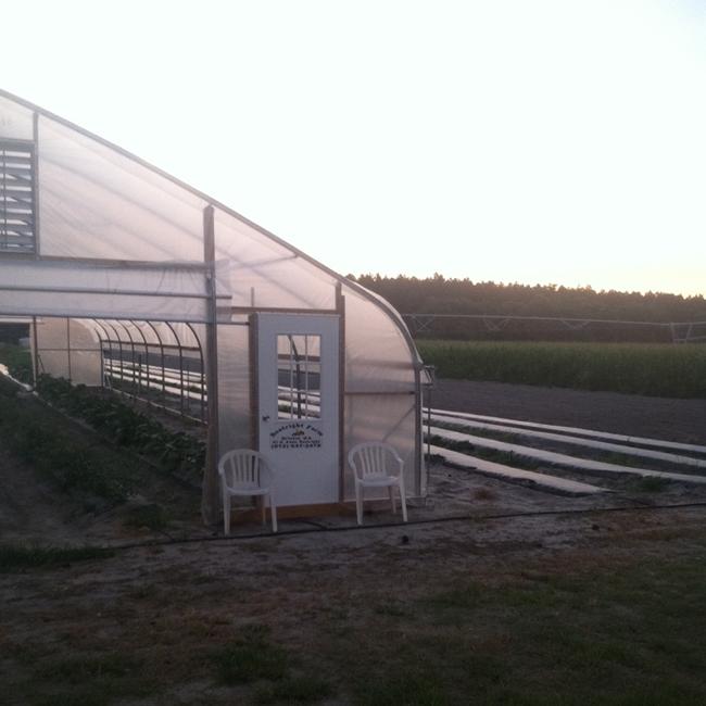 greenhouse-farm-too-crop