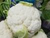 cauliflower02-2015.JPG
