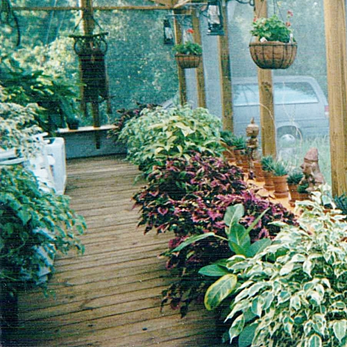 porch-view
