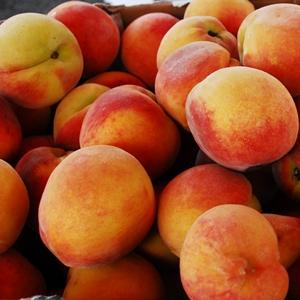 Fernandina Farmers Market Peaches