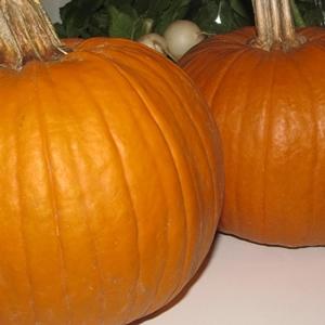 1-start-with-fresh-pie-pumpkin