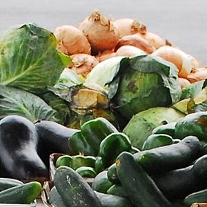 fernandina-farmers-market-oct-11