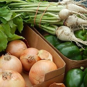 Farmers Market is Open on December 27th