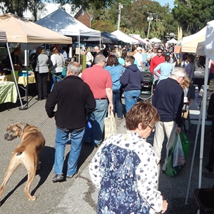 Favorite and New Vendors Come to Farmers Market
