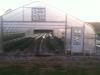 greenhouse3-crop
