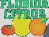citrus-november3